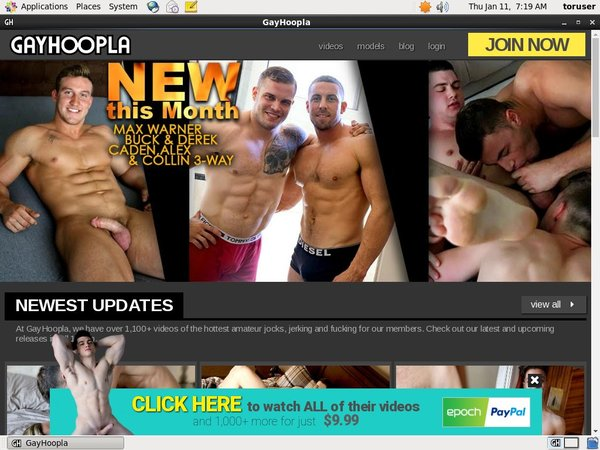Gay Hoopla Coupon Offer