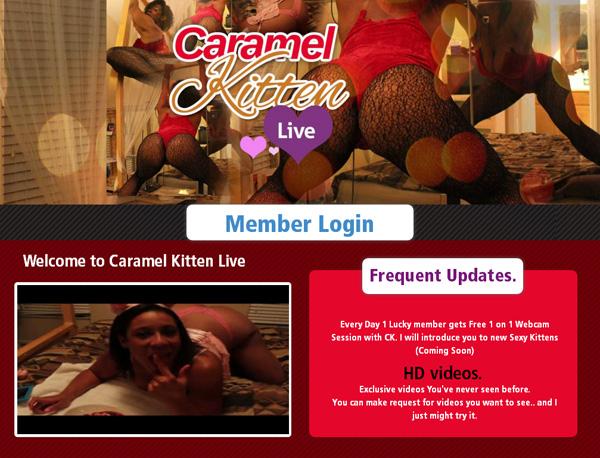 Live Kitten Caramel Access