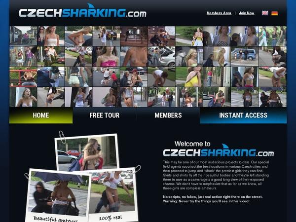 Czechsharking Hacked Accounts