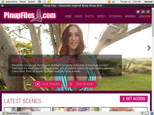 Pinupfiles.com Discount Off