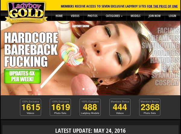 Ladyboy Gold Discount Porno